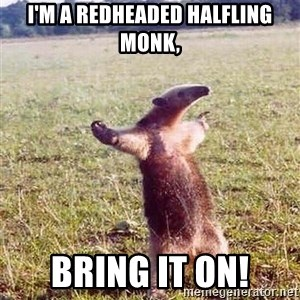 Anteater - I'm a redheaded halfling monk, bring it on!