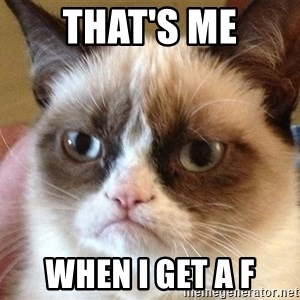 Angry Cat Meme - That's me When I get a F