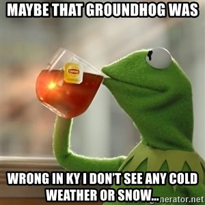 Kermit The Frog Drinking Tea - Maybe that groundhog was Wrong in ky i don't see any cold weather or snow...