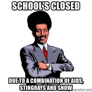 Pool's closed - School's Closed Due to a combination of AIDS, Stingrays and snow