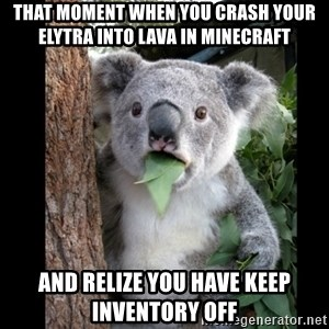 Koala can't believe it - that moment when you crash your elytra into lava in minecraft and relize you have keep inventory off