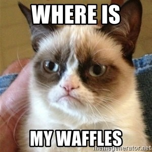 Grumpy Cat  - where is  my waffles