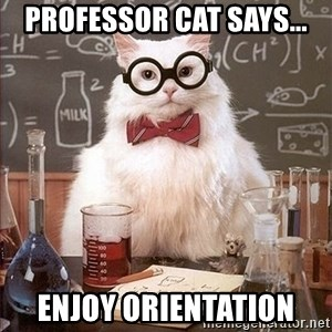 Science Cat - Professor Cat says... Enjoy orientation