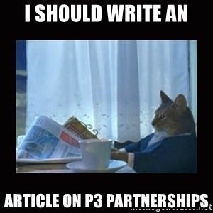 i should buy a boat cat - I should write an Article on P3 partnerships