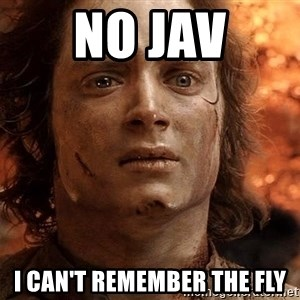 Frodo  - No Jav I can't remember the fly
