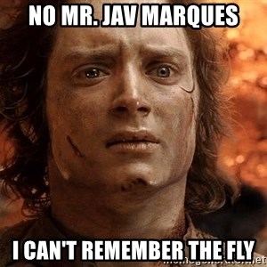 Frodo  - No Mr. Jav Marques I can't remember the fly
