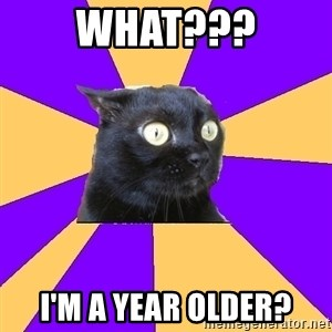 Anxiety Cat - what??? I'm a year older?