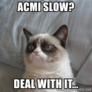 Grumpy cat good - acmi slow? deal with it...