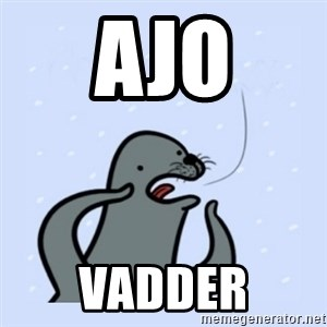 gay seal - Ajo Vadder