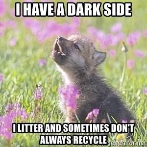 Baby Insanity Wolf - I have a dark side I litter and sometimes don't always recycle
