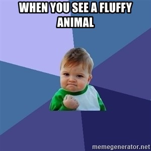 Success Kid - When you see a fluffy animal
