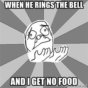 Whyyy??? - When he rings the bell And I get no food