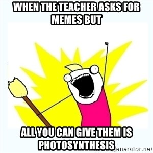All the things - When the teacher asks for memes but all you can give them is photosynthesis