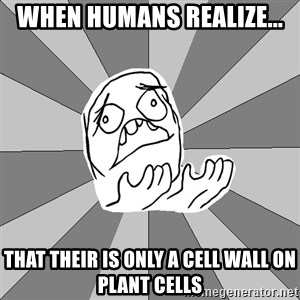 Whyyy??? - When Humans realize... That their is only a cell wall on plant cells