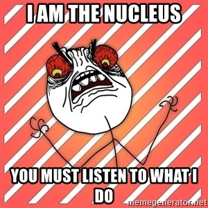 iHate - I am the nucleus You must listen to what I do