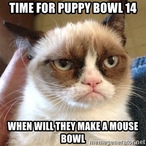 Grumpy Cat 2 - time for puppy bowl 14 when will they make a mouse bowl