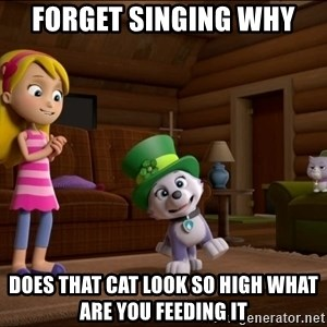 Everest Is Singing - FORGET SINGING WHY  DOES THAT CAT LOOK SO HIGH WHAT ARE YOU FEEDING IT