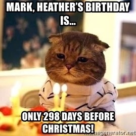 Birthday Cat - Mark, Heather's birthday is... Only 298 days before Christmas!