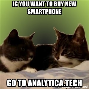 Two Talking Cats - ig you want to buy new smartphone go to analytica.tech