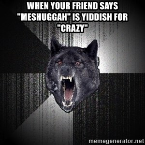 """Insanity Wolf - When your friend says """"Meshuggah"""" is Yiddish for """"Crazy"""""""