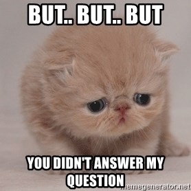 Super Sad Cat - But.. but.. but You didn't answer my question