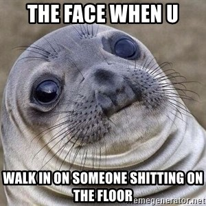 Awkward Seal - the face when u walk in on someone shitting on the floor