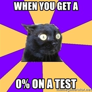 Anxiety Cat - when you get a 0% on a test