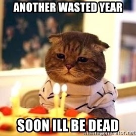 Birthday Cat - another wasted year soon Ill be dead