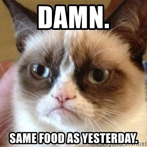 Angry Cat Meme - Damn. Same food as yesterday.