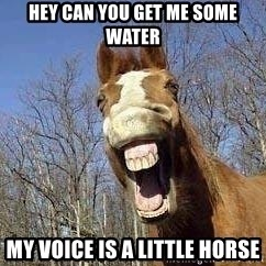 Horse - hey can you get me some water My voice is a little horse