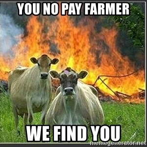 Evil Cows - yOU NO PAY FARMER WE FIND YOU