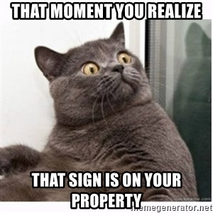 Conspiracy cat - That moment you realize That sign is on your property