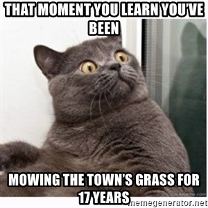 Conspiracy cat - That moment you learn you've been Mowing the town's grass for 17 years