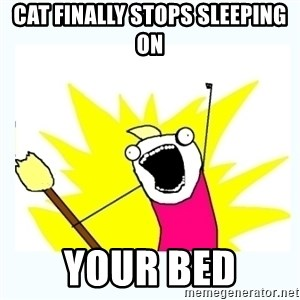 All the things - cat finally stops sleeping on your bed