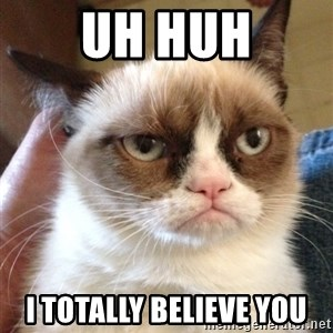 Grumpy Cat 2 - uh huh I totally believe you
