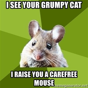 Prospective Museum Professional Mouse - I see your grumpy cat I raise you a carefree mouse