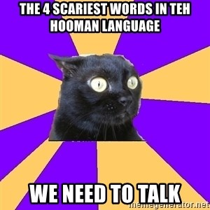 Anxiety Cat - the 4 scariest words in teh hooman language we need to talk