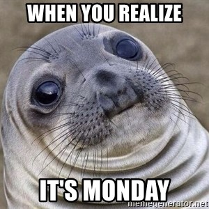 Awkward Seal - When You Realize It's Monday