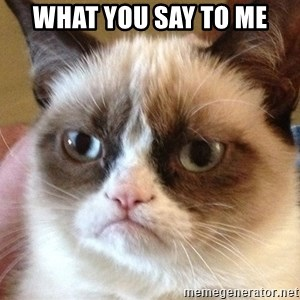 Angry Cat Meme - what you say to me