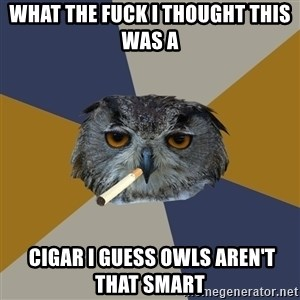 Art Student Owl - What the fuck i thought this was a  Cigar i guess owls aren't that smart
