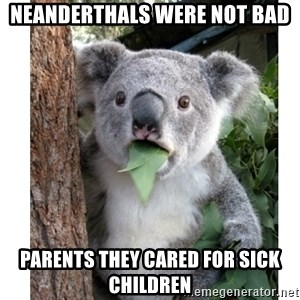 surprised koala - Neanderthals were not bad parents they cared for sick children