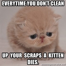 Super Sad Cat - EVERYTIME YOU DON'T CLEAN UP  YOUR  SCRAPS  A  KITTEN  DIES.
