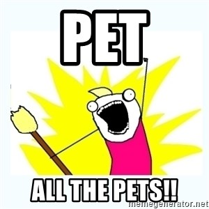 All the things - Pet All the pets!!