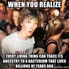 Sudden Realization Ralph - When you realize  every living thing can trace its ancestry to a bacterium that lived billions of years ago