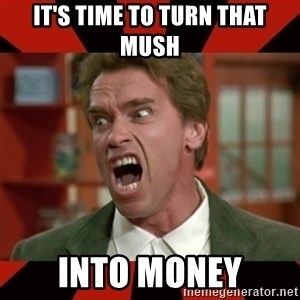 Arnold Schwarzenegger 1 - it's time to turn that mush into money