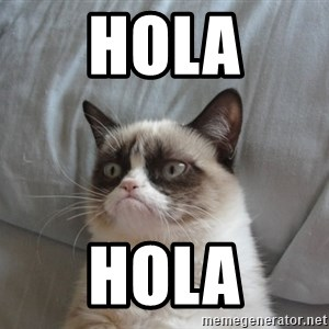 Grumpy cat good - Hola Hola