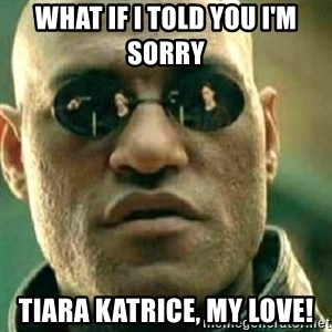 What If I Told You - What if I told you I'm sorry  Tiara Katrice, my love!