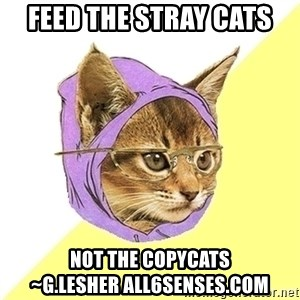 Hipster Kitty - Feed the stray cats Not the copycats            ~G.Lesher All6Senses.com
