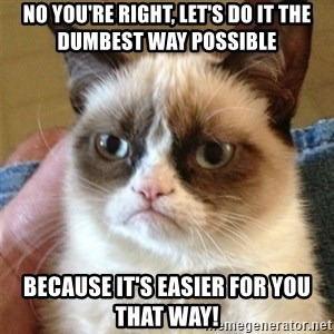 Grumpy Cat  - NO YOU'RE RIGHT, LET'S DO IT THE DUMBEST WAY POSSIBLE BECAUSE IT'S EASIER FOR YOU THAT WAY!