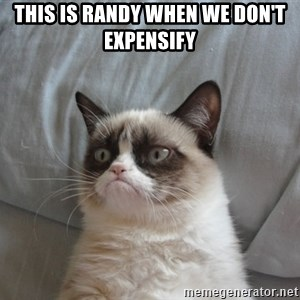 Grumpy cat 5 - This is Randy when we don't Expensify